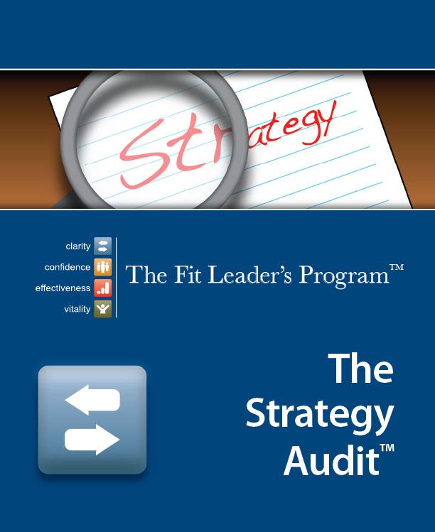 strategy audit